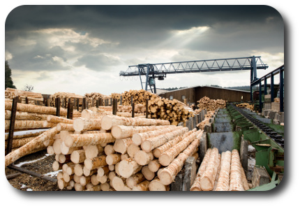 Holzfasern und Kaminholz